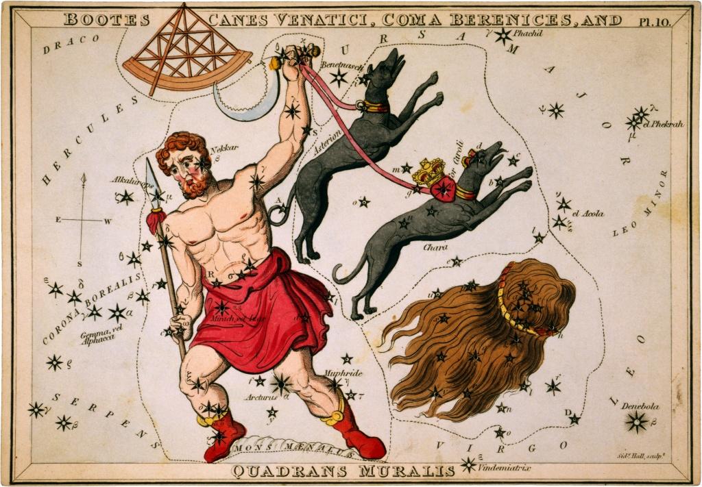 Созвездие Волопас из Атласа «Urania's Mirror» (London, 1825)